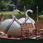 Celebrating Women's Equality Day at the Swan Boats
