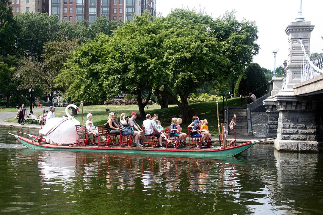 Swan Boats 2016 008