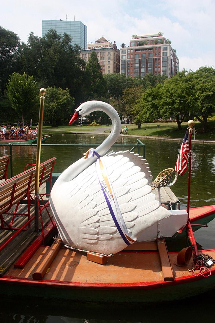 Swan Boats 2016 012
